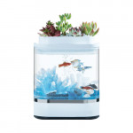 Geometry Mini Lazy Fish Tank